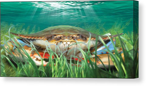 Crabgrass Crab Wall Art - JWB Art Unlimited