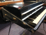 Rhodes Fifty Four 1981