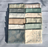 Serenity Fusion Half Yard Bundle by AGF Studio