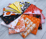 Squeeze Fat Quarter Bundle by Dana Willard