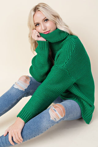 Chunky Turtle Neck Top
