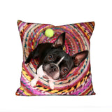 Cykochik Custom Photo eco-friendly vegan throw pillow - Boston Terrier Front