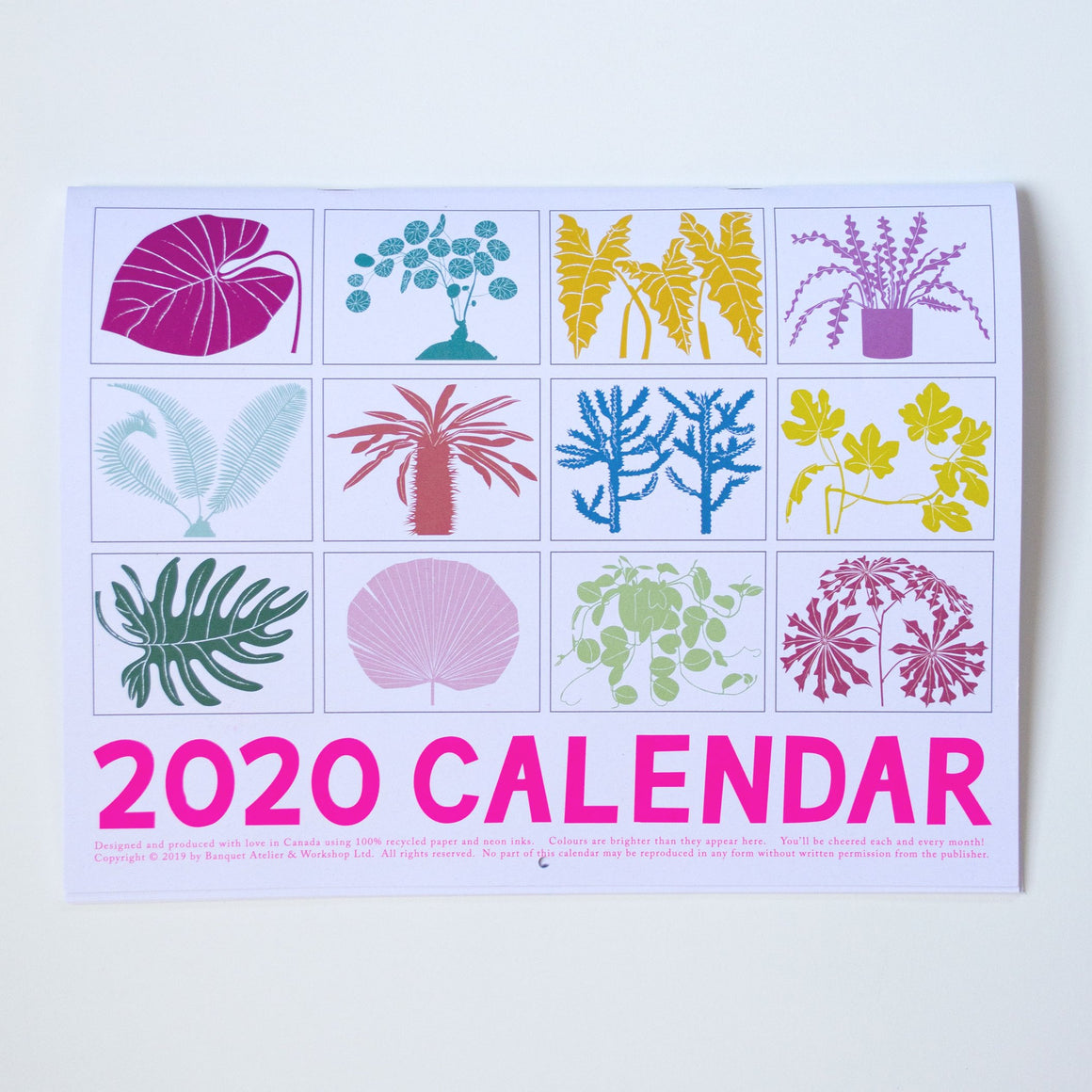 2020 Houseplants Calendar