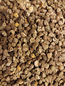 Hawaiian Baby Woodrose Seeds - Organic and Untreated HBWR