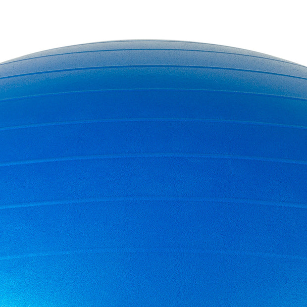 65cm Burst-Resistant Exercise Ball with Pump