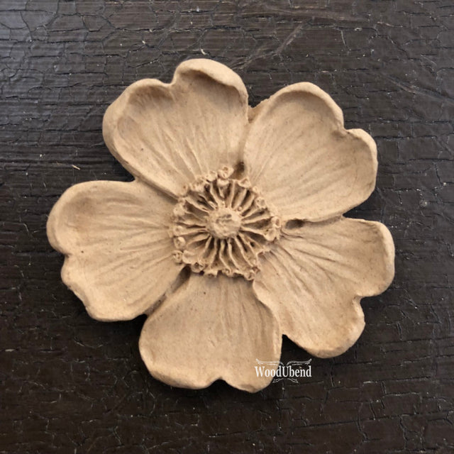 5 Petal Flower #1479 - JJ Bean Designs