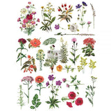 REDESIGN DÉCOR TRANSFERS® – FLORAL COLLECTION 24″X 34″ - JJ Bean Designs