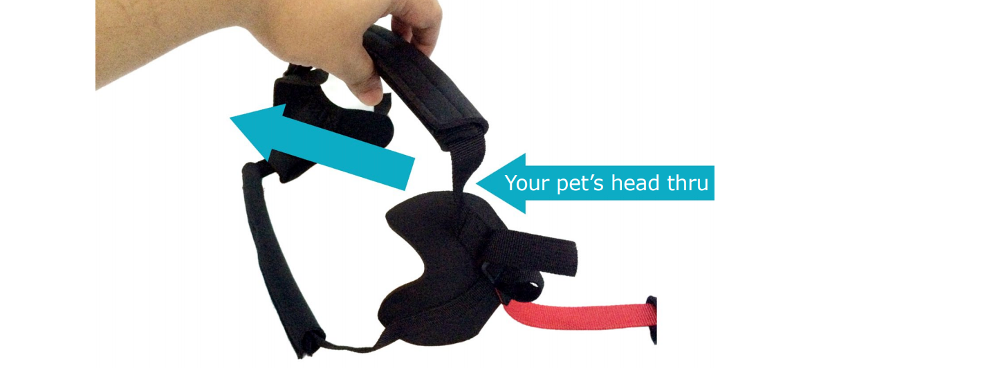Sitgo Guide your pet's head thru the two black straps