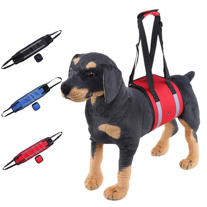Dog Lift Harness in Blue