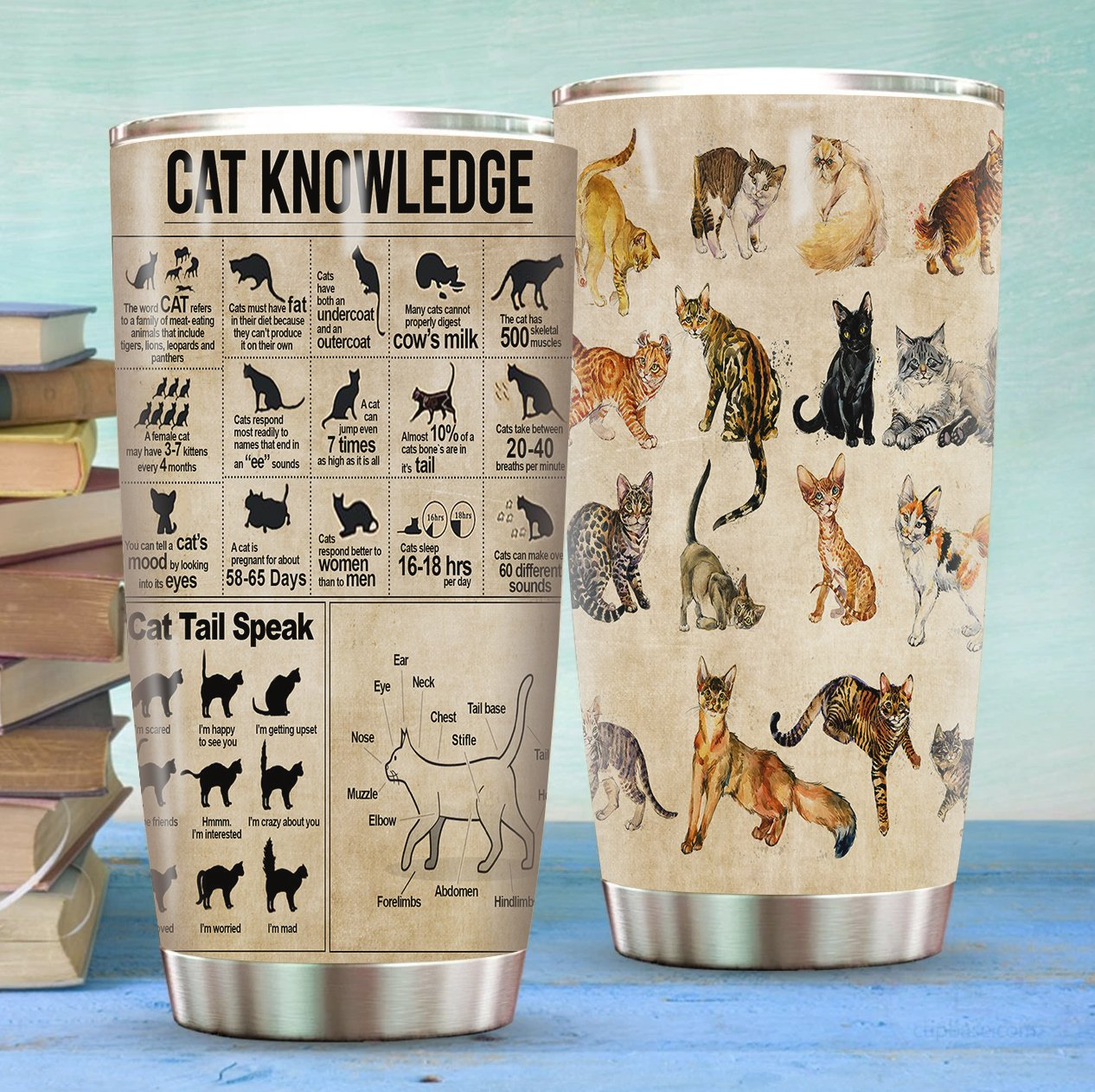 Cat Knowledge Stainless Steel Tumbler