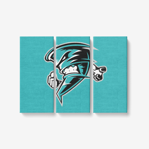 "ARKANSAS TWISTERS 3 PIECE CANVAS WALL ART -  3x8""x18"""