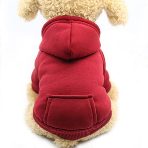 Warm Pet Coat Outfit.