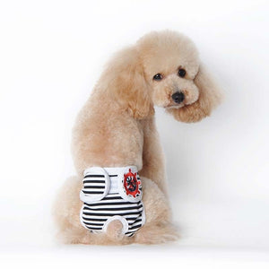 Durable Female Pet Dog Panty