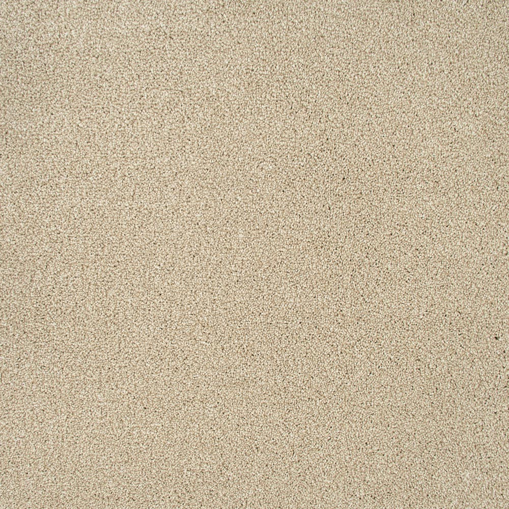 Coral White Sensation Heathers 60oz Carpet