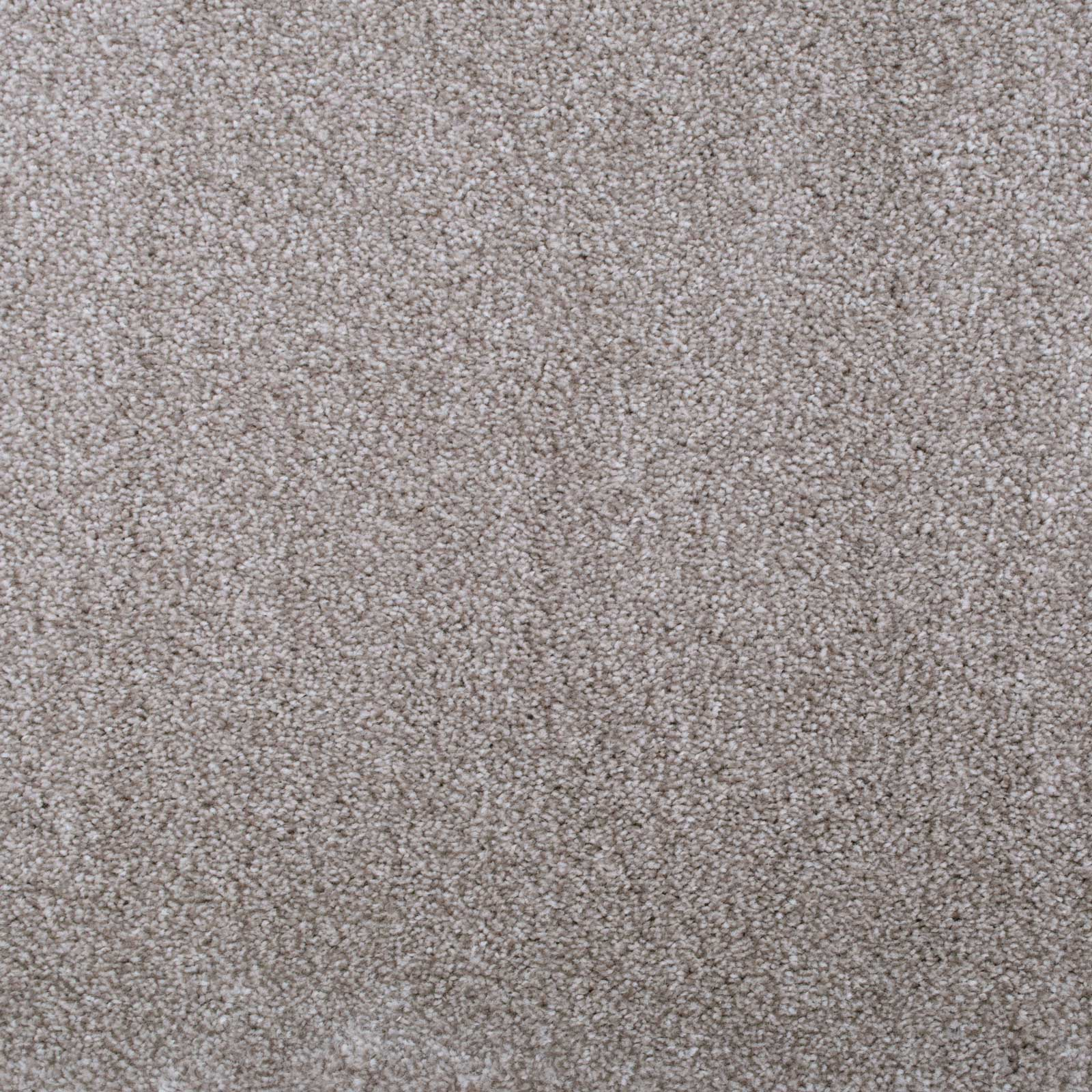 Cream & Dark Beige Supreme Saxony Carpet - Far