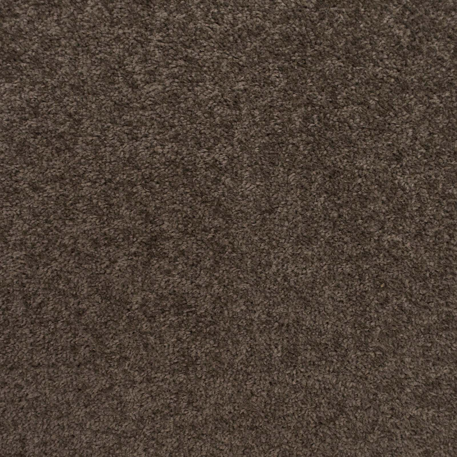 Dark Grey Brown Felt Back Twist Carpet - Far