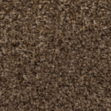 Earth Brown Liberty Heathers Twist Carpet - Close