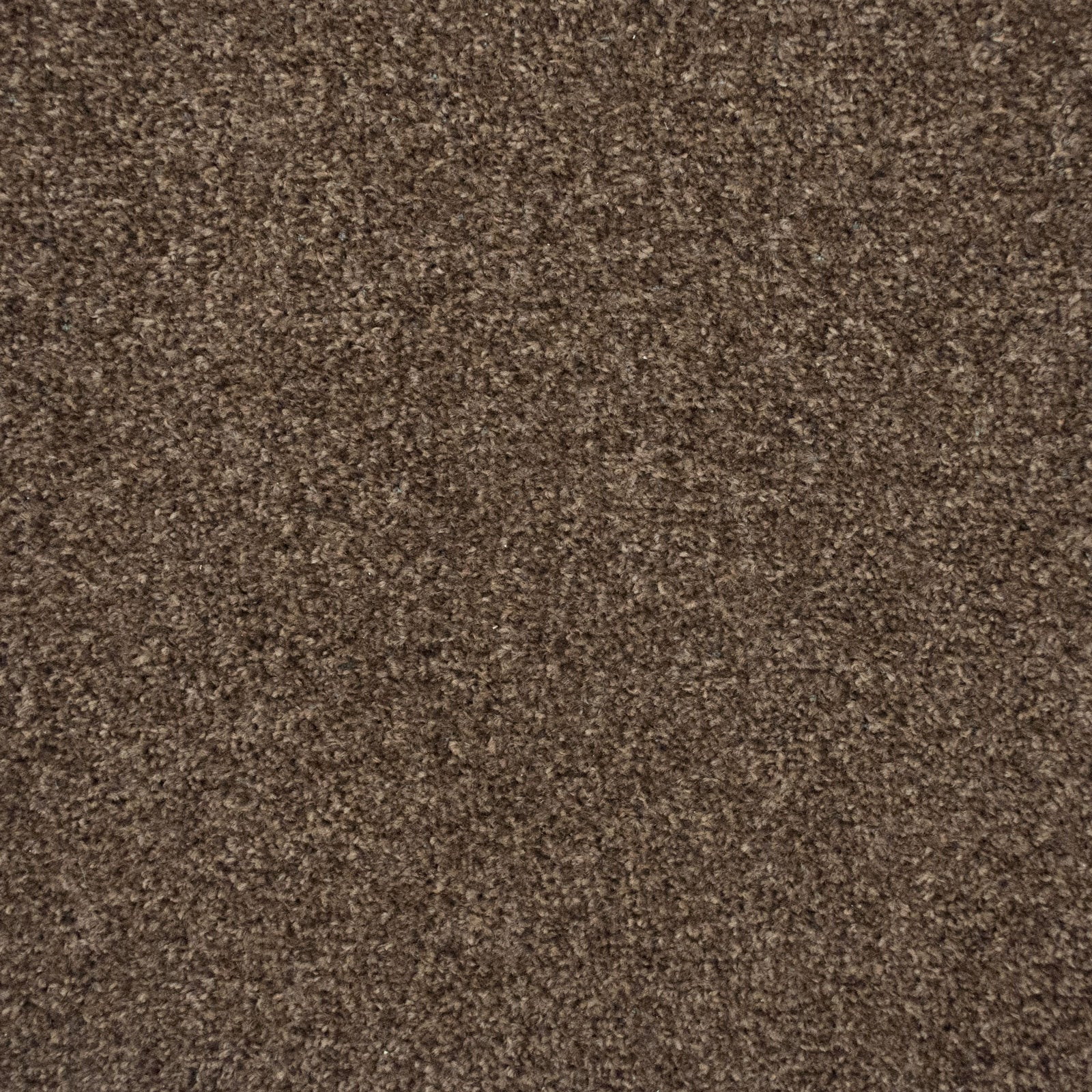 Earth Brown Liberty Heathers Twist Carpet - Far