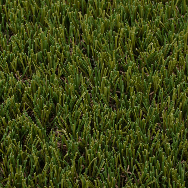 Fennel Artificial Grass - Close Detail