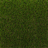 Fennel Artificial Grass - Far