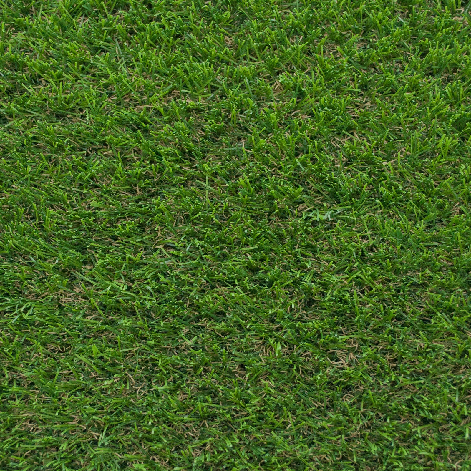 Juniper Artificial Grass - Far