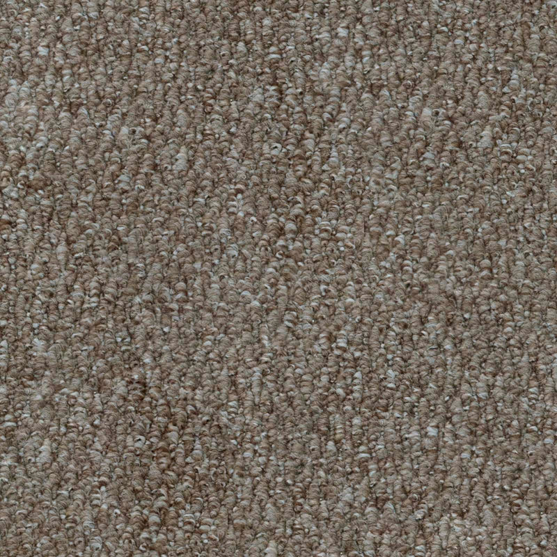 Light Brown Port Loop Carpet - Close