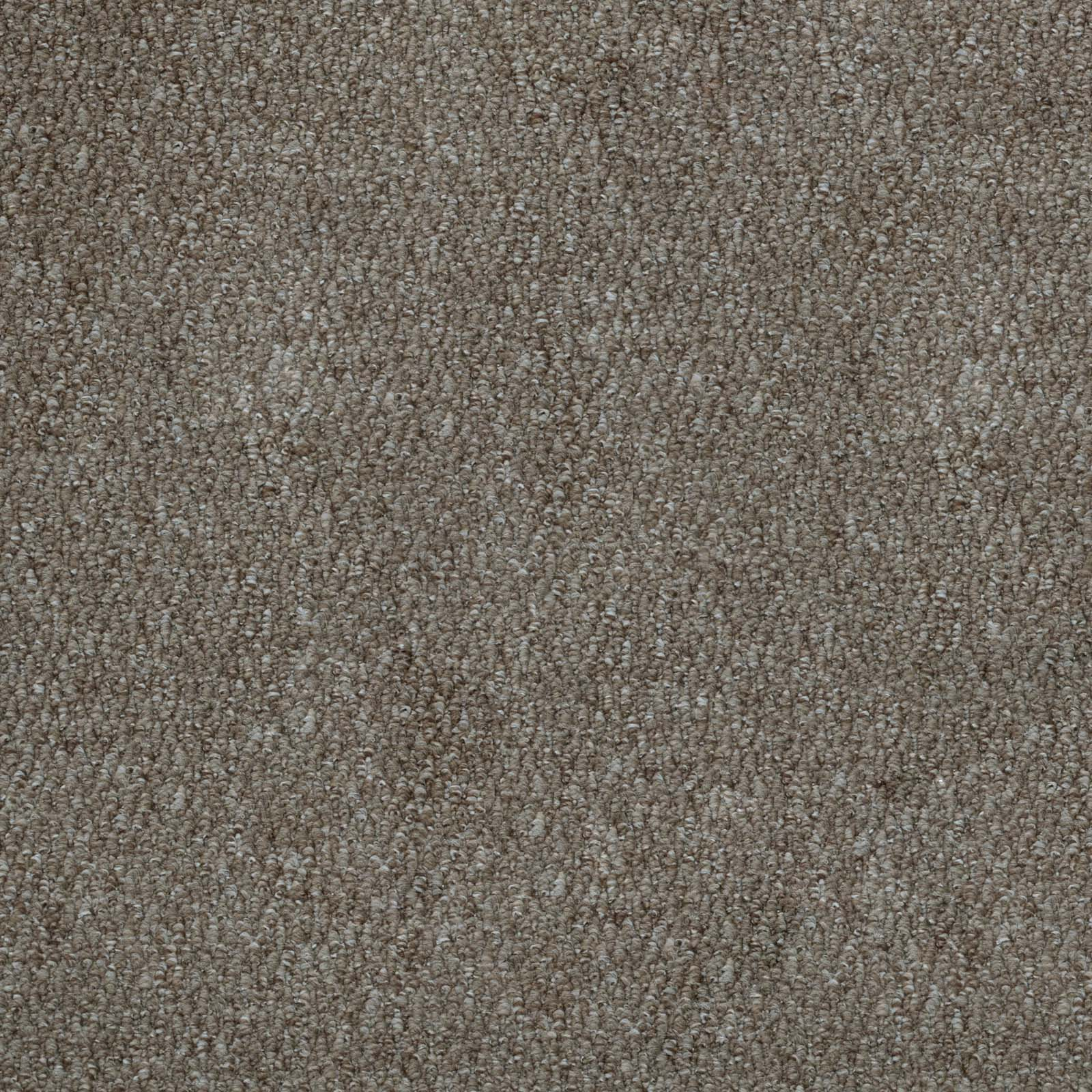 Light Brown Port Loop Carpet - Far