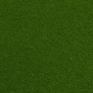 Light Green Outdoor Carpet - Far