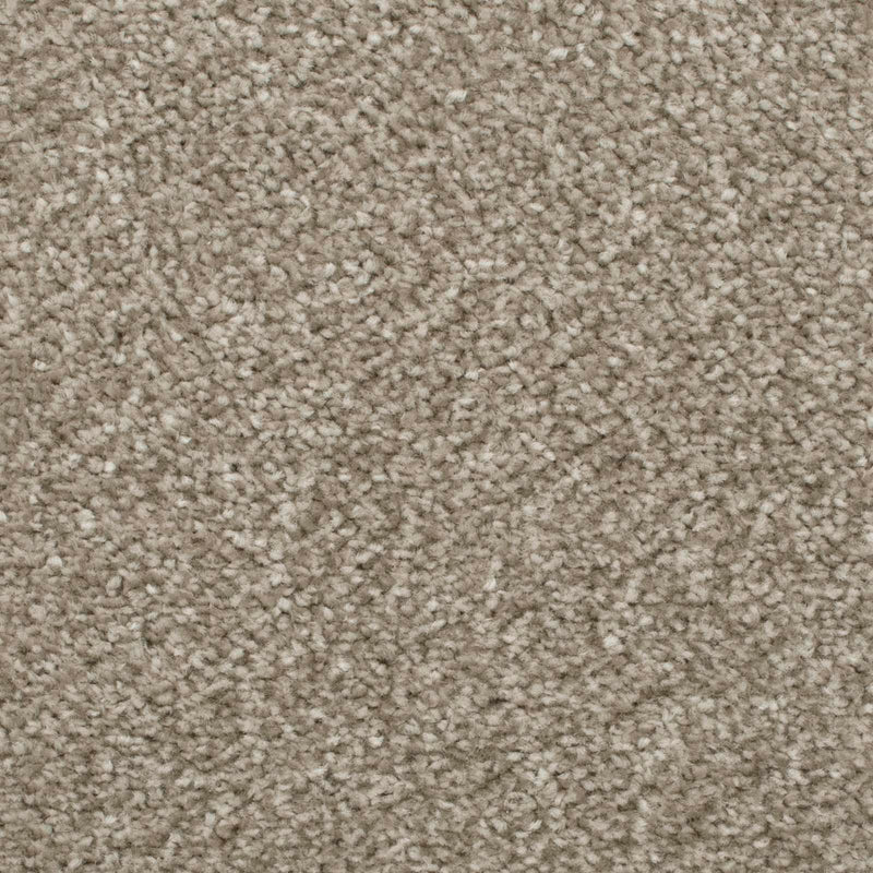 Mink Admiral Saxony Carpet - Close