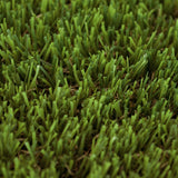 Tiger Lily Artificial Grass - Close Detail