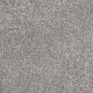 Warm Grey Supreme Felt Back Saxony Carpet - Far