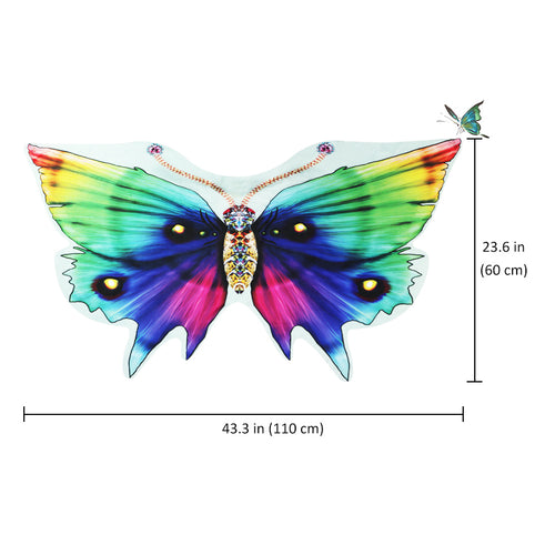 Rainbow Emperor Butterfly Wings