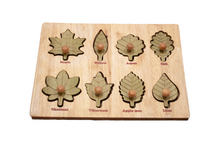 Load image into Gallery viewer, Montessori Leaf Puzzle