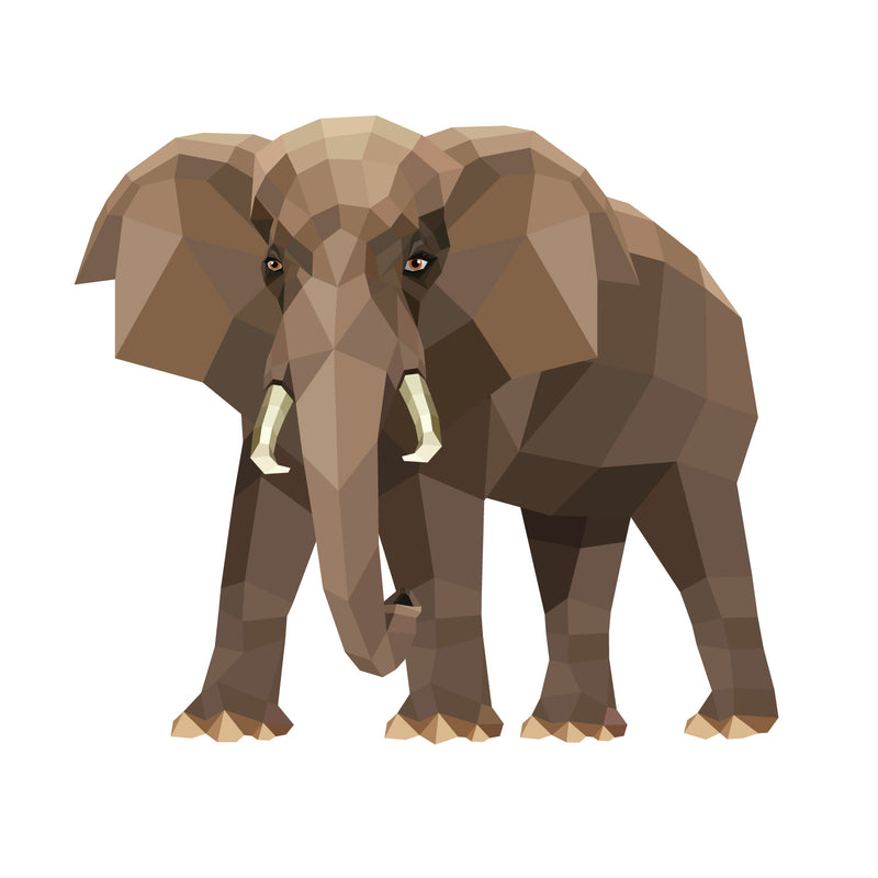 products/African-bush-elephant-v02.jpg