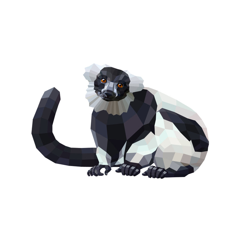 products/Black-and-white-ruffed-lemur-v03.jpg
