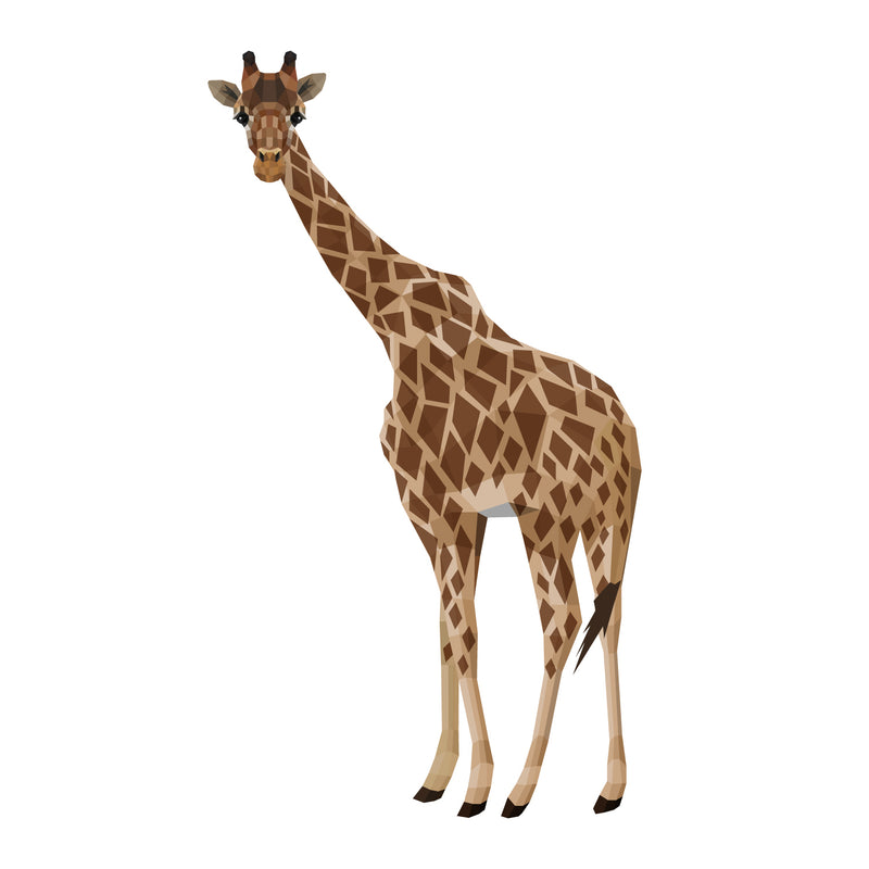 products/Masai-Giraffe-02.jpg