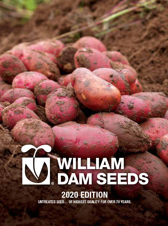 William Dam Seeds Catalogue 2020 Edition