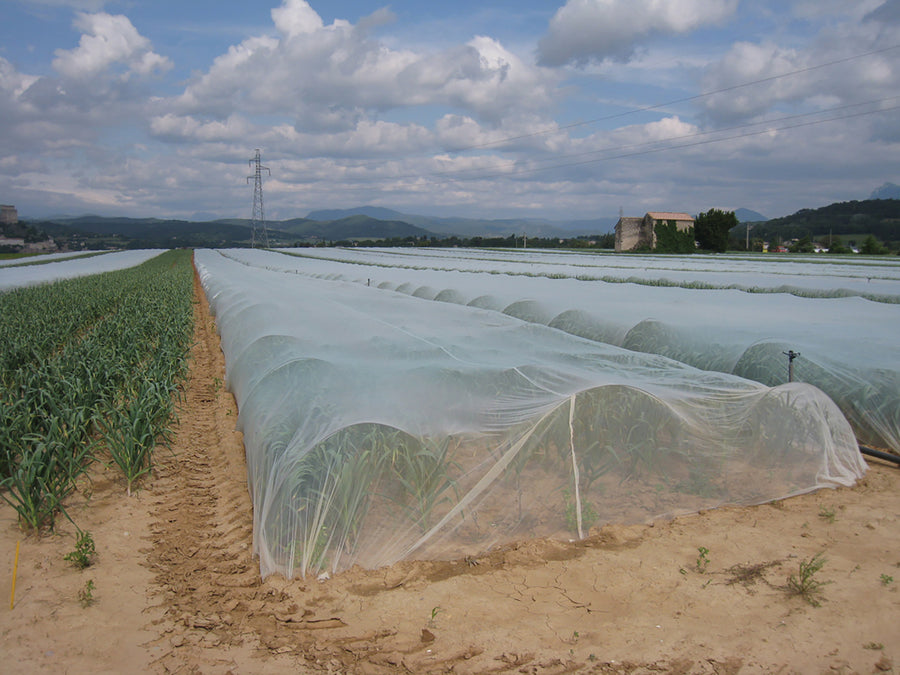 Insect Netting 14' x 100'