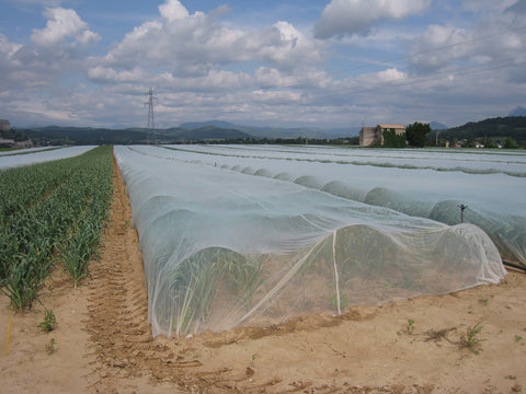 Insect Netting 6.9' x 25'