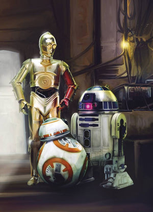Komar Star Wars Three Droids Fotobehang 184x254cm | Yourdecoration.nl