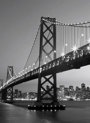 Wizard+Genius San Francisco Skyline Vlies Fotobehang 192x260cm 4-banen | Yourdecoration.nl