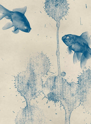 Wizard+Genius Blue Fish Vlies Fotobehang 192x260cm 4-banen | Yourdecoration.nl