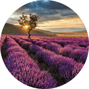 Wizard+Genius Lavender in the Provence Vlies Fotobehang 140x140cm rond | Yourdecoration.nl