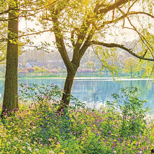 Komar Spring Lake Fotobehang National Geographic 368x254cm | Yourdecoration.nl