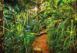 Komar Jungle Trail Fotobehang 368x254cm | Yourdecoration.nl