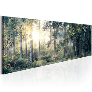 Artgeist Morning Magic Canvas Schilderij  | Yourdecoration.nl