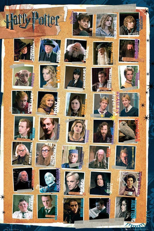 GBeye Harry Potter 7 Characters Poster 61x91,5cm | Yourdecoration.nl