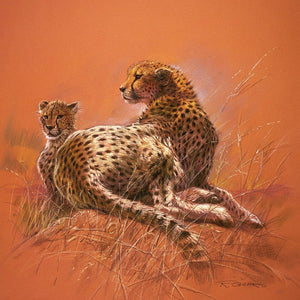 Renato Casaro - Cheetah Mother Kunstdruk 50x50cm | Yourdecoration.nl