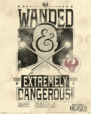 Pyramid Fantastic Beasts Extremely Dangerous Poster 40x50cm | Yourdecoration.nl