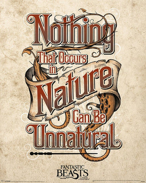 Pyramid Fantastic Beasts Unnatural Poster 40x50cm | Yourdecoration.nl